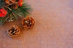 Christmas fir cones Royalty Free Stock Photo
