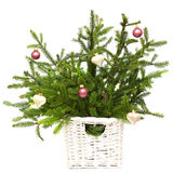 Christmas fir with decoration isolated royalty free stock images