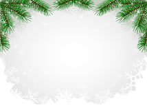 Christmas fir hoarfrost pattern Royalty Free Stock Images
