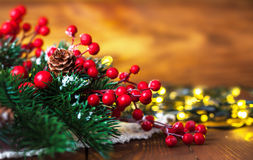 Christmas fir with pinecone and garland Royalty Free Stock Images