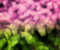 Christmas Fir Pink Abstract Background Royalty Free Stock Images
