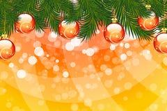 Christmas fir tree Stock Image