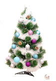 Christmas fir tree Stock Photography
