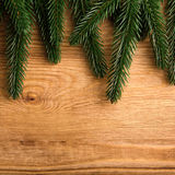 Christmas fir tree Stock Images