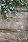 Christmas Fir Tree Royalty Free Stock Photo