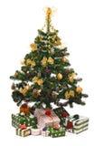 Christmas fir tree Royalty Free Stock Photography