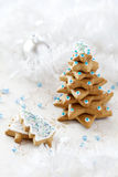 Christmas Fir tree background Royalty Free Stock Image