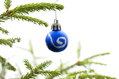 Christmas Fir Tree With Blue Christmas Ball Royalty Free Stock Photography