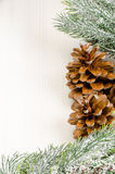 Christmas Fir Tree Border with Cones Royalty Free Stock Photo