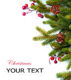 Christmas. Fir tree Border Design Royalty Free Stock Images