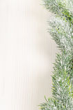 Christmas Fir Tree Border Royalty Free Stock Images
