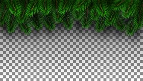 Christmas fir tree border stock photo