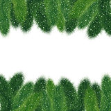 Christmas fir tree borders Royalty Free Stock Images