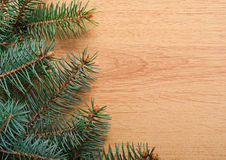 Christmas fir-tree branch Stock Photo
