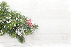 Christmas fir tree branch covered by snow on wood Royalty Free Stock Photo