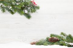 Christmas fir tree branch covered by snow royalty free stock photography