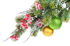 Christmas fir tree branch with holly berry and baubles Royalty Free Stock Photos
