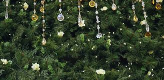 Christmas fir tree close-up background with a row of crystal pendants as decorations on top. Christmas fir tree close-up background with a row of crystal Stock Images