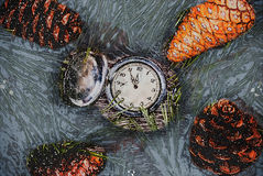 Christmas fir tree with cones and clock Royalty Free Stock Images