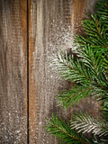 Christmas fir tree covered with snow. On wooden board background Royalty Free Stock Photography