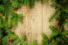 Christmas fir tree frame Royalty Free Stock Image