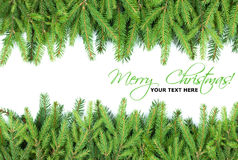 Christmas fir tree frame design elements royalty free stock images