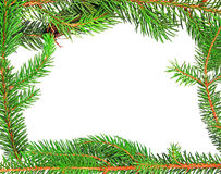 Christmas fir tree frame design elements royalty free stock image