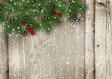 Christmas fir tree with holly on a wooden board Royalty Free Stock Photo