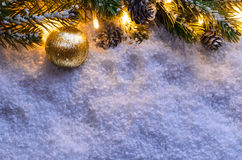 Christmas fir tree with lights Stock Image