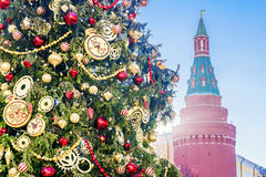 Christmas fir tree near the walls of the Kremlin, Moscow.  stock images