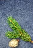 Christmas fir tree over denim Royalty Free Stock Image