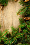 Christmas fir tree with pinecones Royalty Free Stock Images