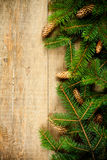 Christmas fir tree with pinecones Stock Photography