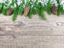 Christmas fir tree on rustic wooden board Royalty Free Stock Photo