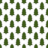Christmas fir tree seamless pattern Stock Image