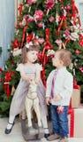 Christmas fir-tree Royalty Free Stock Image
