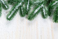 Christmas fir tree with snow on white wooden background. Free space frame Stock Images