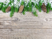 Christmas fir tree with snowflakes Stock Images