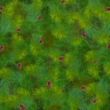 Christmas fir tree texture. Vector illustration Stock Photos