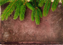 Christmas fir tree with vintage paper Royalty Free Stock Photography