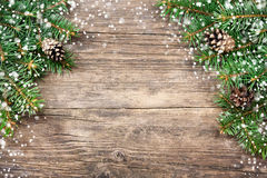 Christmas fir tree Stock Photos
