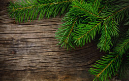 Christmas fir tree on wooden background Stock Photo