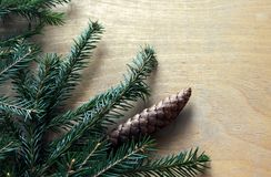 Spruce on wooden background Stock Photography