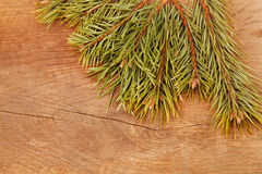 Christmas fir tree on a wooden background. Christmas fir tree on a wooden table Royalty Free Stock Photography