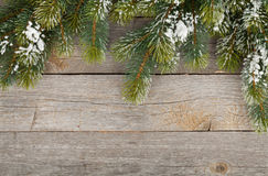 Christmas fir tree on wooden board background Royalty Free Stock Photo