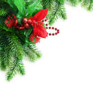 Christmas fir twig Stock Photo