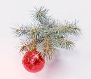 Christmas fir twig with red ball and glare. stock photo