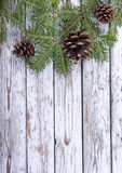 Christmas fir twig  on the wooden background Royalty Free Stock Image