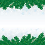 Christmas Fir Twigs White Snow Centre. Snow with fir branches on white grey background Stock Photography