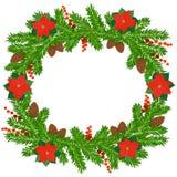 Christmas fir wreath. Christmas wreath of fir twigs and poinsettia Royalty Free Stock Photos